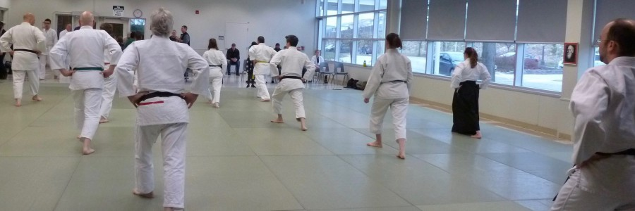 New Adult Aikido Class on Friday